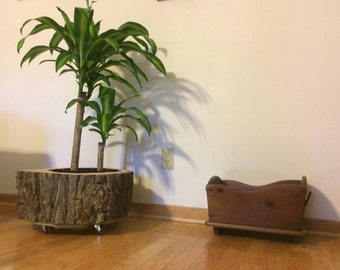 Rolling Tree Trunk Planter