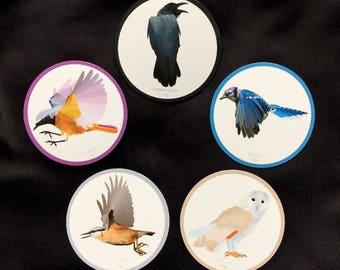 5 Fridge Magnets_set1 Bird print high quality paper