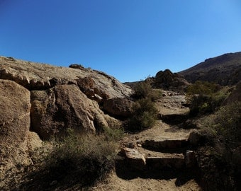 Path to the Oasis in Joshua Tree National Park - Landscape Photography - Instant Download