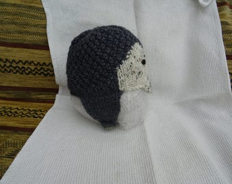 Hand Knitted hedgehog hat. 0-6mth. Acrylic and wool Aran.
