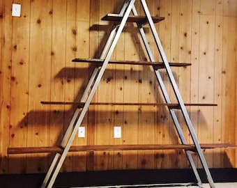 Pyramid Shaped metal and wood bookcase