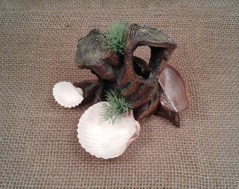 Hermit Crab Food/Water/Bath Dish/Bowl HCFWB4