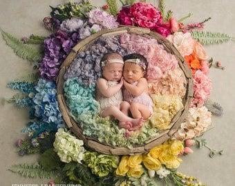 Rainbow / Newborn Digital Backdrop