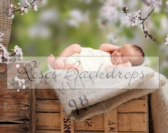 Digital background, scenery, newborn babies, boys, girls