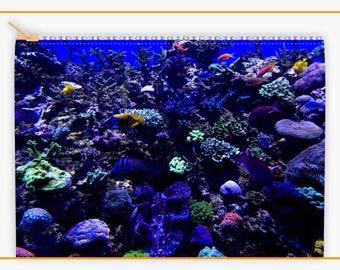 Coral Reef Makeup bag
