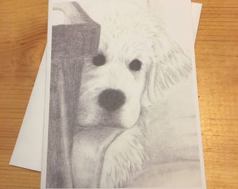 Hiding Great Pyrenees Puppy Blank Note Card