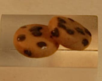 Biscuit with chocolate chips