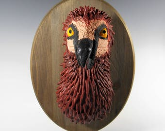 Bearded Vulture Faux Taxidermy Mount