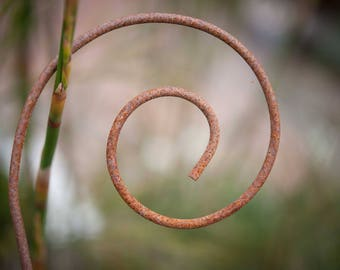 Rusty Spiral Plant Stake