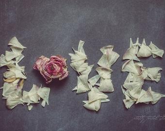 Fine Art Print, Love Art, Typography, Flower Art, Petals, Love Print, Home Decor, Floral Photography, Blooms, Ranunculus, Love Photograph