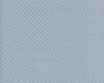 Cotton + Steel S.S. Bluebird - shibori - natural - fat quarter