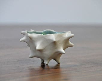 Blue Tiny Conch Planter Bowl -  Blue White Modern Ceramic Indoor Planter Bowl Modern Planter Ceramic Pot