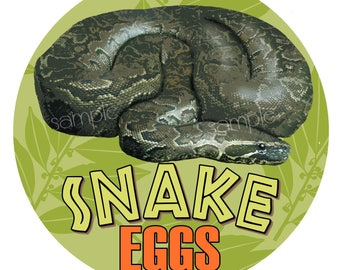 Snake stickers, Snake eggs, Reptile Birthday party, Snake favor labels, gift stickers, safari stickers, jungle stickers, party favors,kids