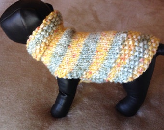 Chihuahua lemon Drop Sweater.