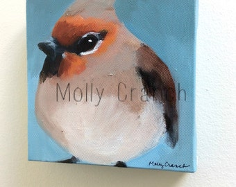 Inquisitive- Small Painting on Canvas, Bohemian Waxwing