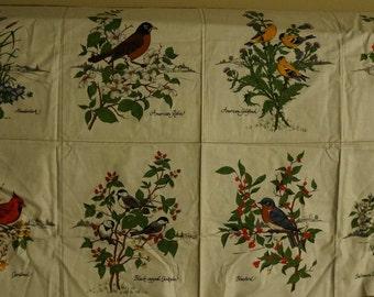 Backyard Birds Squares Blocks Robin Bluebird Oriole Chicadee Cardinal Fabric Panel