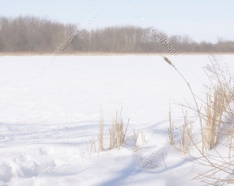 Winter Marsh Soft Landscape Photograph, Digital Download, Winter Background Photo, Sunlight and Shadows on Snow Rural Landscape Picture