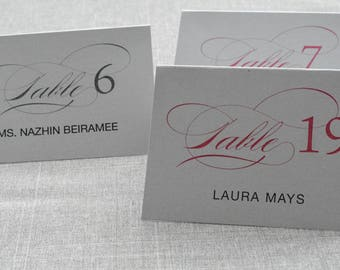Shimmery Silver Calligraphy Wedding Place Cards - Modern Place Card, Simple, Hot Pink, Gray, Traditional - Escort Card - Elnaz &Andrew