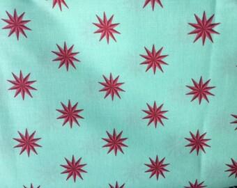 FQ Tula Pink Fox Field Vintage Stars