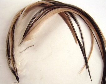 Natural long Feather Earrings black with taupe