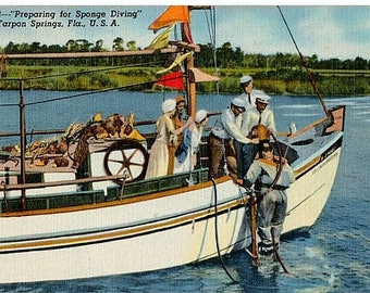 Vintage Florida Postcard - Preparing for Sponge Diving, Tarpon Springs (Unused)