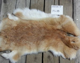 One Rabbit Hide as Shown. Lot No. 170425-P