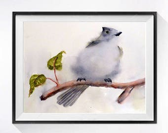 Nature Bird Art Prints Small song bird watercolor painting Bird illustration Gray painting small print Oak Titmouse art print A