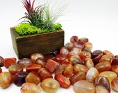 Tumbled Stones By the Ounce - RED FIRE AGATE - (Ai)
