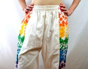 Vintage 70s 80s Pacific Scene Rainbow Striped Board Short Shorts