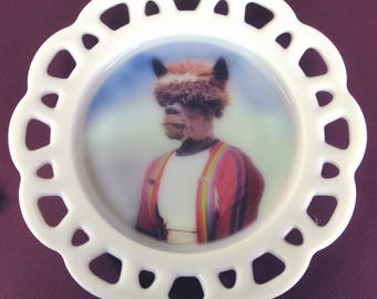 Anthony Alpaca, Senior Portrait Plate 8.5""