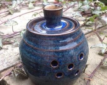 Blue Garlic pot lidded pot kitchen storage handmade pottery jar with lid
