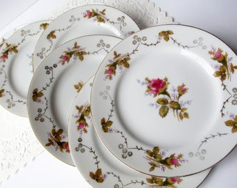 Vintage Bread and Butter Plates Moss Rose Summit Fine China Set of Six