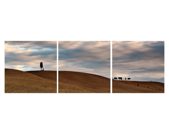 """TRIPTYCH Fine Art Color Photography of Tuscany - """"Tuscan Landscape at Dawn"""""""