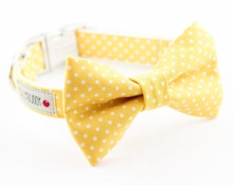 Yellow Dot Bowtie Dog Collar