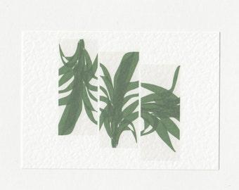 Palm Leaf Postcard // Minimalist Contemporary Art Modern Print A6