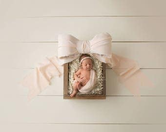 "Digital Backdrop- ""The Classic Girly""- Newborn Prop"