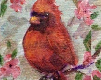 """Red cardinal bird no8 painting original art 7 x 5"""""""