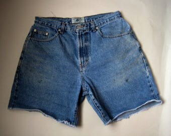 "High Waisted  Denim Shorts, High Waisted  Shorts , American Eagle Outfitters Jean Shorts,  American Eagle Shorts, 33"" Waist"