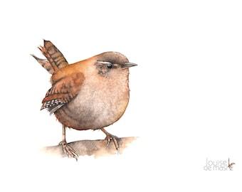 Wren print of watercolor painting A4 size W20517, wren watercolor painting print, Bird print, wildlife art, Wren wildlife print