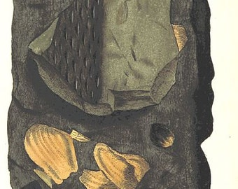 Vintage Mineralogy Illustration Digital Paper: Argilla schistosa