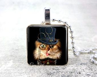 British cat fancy