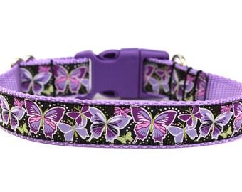 "Butterfly Dog Collar 1"" Spring Dog Collar"