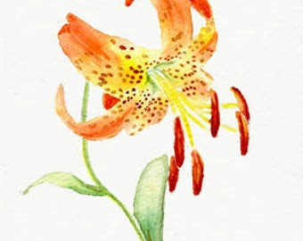 Lily, flower painting, 5x7 print, floral painting, original watercolor, nature, flowers, home & living, earthspalette