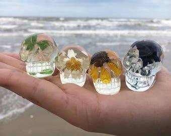 Miniature Preserved Nature Mini Skull (1)