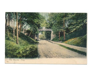 antique Scottish postcard of the beautiful Ravine at Filey, Scotland, 1907