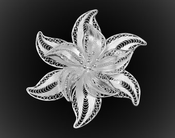 Brooch beautiful night in silver embroidery