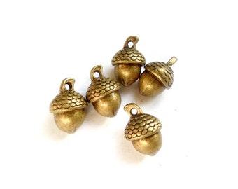 5 Antique Bronze Acorn Charms - 27-30-3