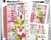 "June CALENDAR PAGES Kit, ""Bloom"" June kit fits Erin Condren Life Planners, Monthly Calendar Stickers fits EC Calendars"