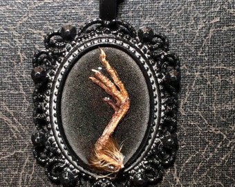 Tiny Quail Foot Cameo Real Talons Taxidermy Bird Claws Preserved Foot Specimen Necklace