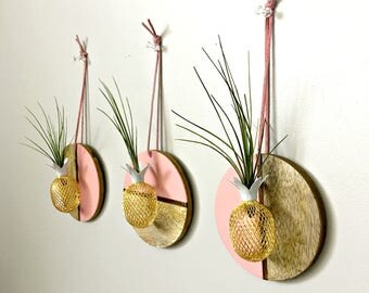 Circle wood wall hanging with pineapple and air plant   / Tillandsia air plant/ wall decor-  pink and wood air plant display